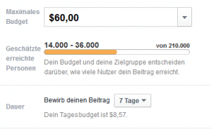 Facebook Werbung Kampagnenbudget