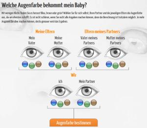 Augenfarbenrechner (Quelle: http://www.mytoys.de/my-blog/augenfarbenrechner/)