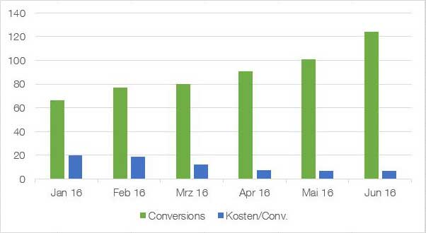 adwords optimierung cpo/cpl conversion-optimierung