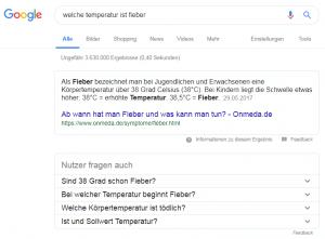 Screenshot Nutzer-fragen-auch-Snippet
